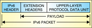 Fig. 2: Structure of an IPv6 packet