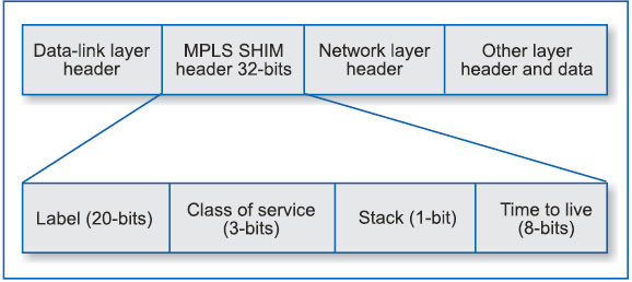 Fig. 3: Generic MPLS label format