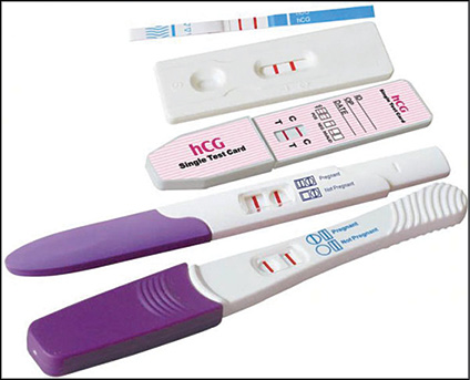 Fig. 3: Pregnancy test that detects hCG protein in urine