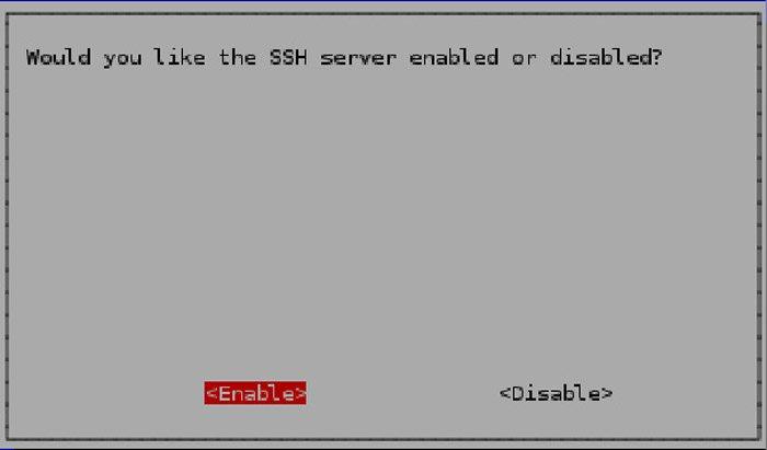 Fig. 4: Enable SSH server