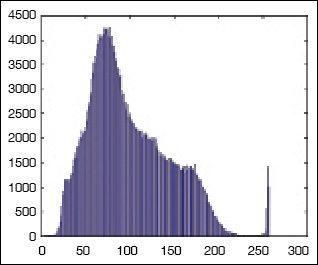 Fig. 11: Histogram of uniformly bright image