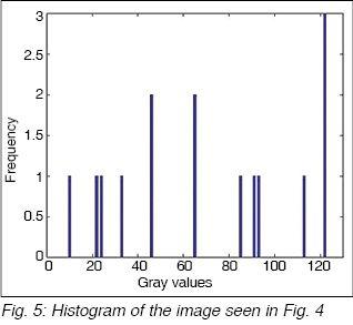 Understanding Digital Camera Histograms Using MATLAB