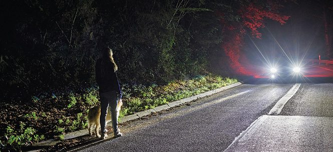 Ford is developing a smart headlight system that can highlight pedestrians, cyclists and animals in an attempt to make driving at night safer (Image courtesy: http://innovationworkshop.fordpresskits.com)