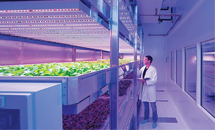 Philips' new GrowWise indoor farm will revolutionise food production (Image courtesy: www.lighting.philips.com)