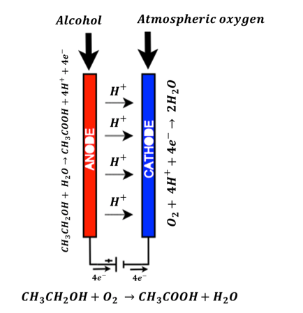 Figure 6: Fuel Cell Based Breath Analyzer Sensor chemical reactions
