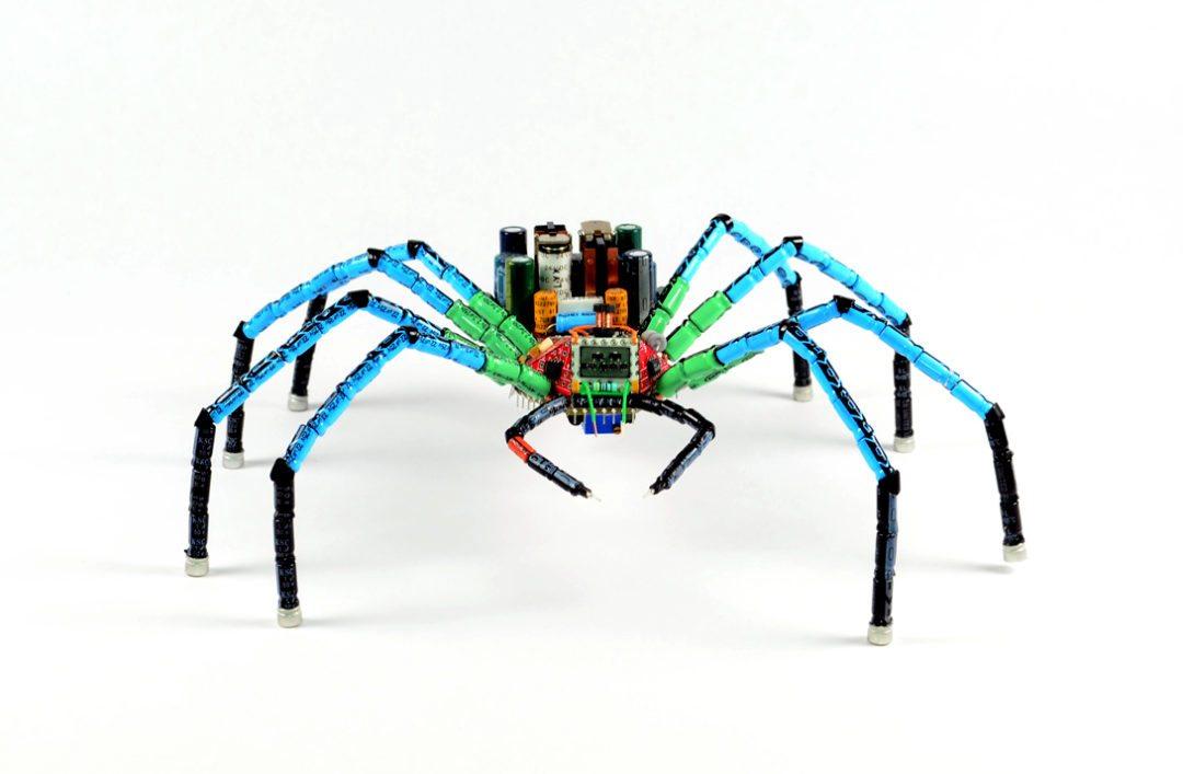 Data_Spider