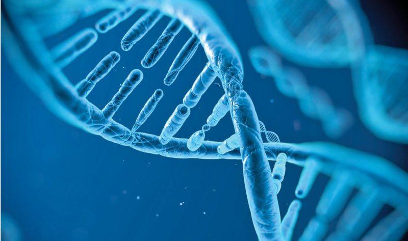 DNA data storage (Image courtesy: http://marinataracova.com)