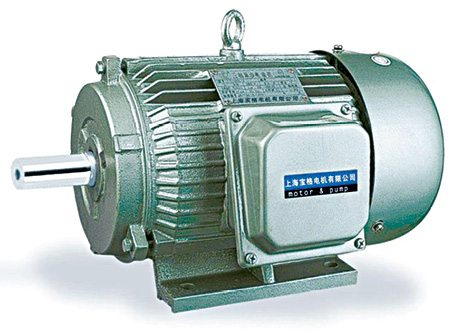 Three-phase induction electric motor
