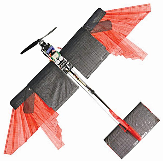 After observing birds in flight, researchers from Laboratory of Intelligent Systems had the idea of building an energy-efficient winged drone capable of changing its wingspan, flying at high speed and moving through tight spaces (Image courtesy: École Polytechnique Fédérale de Lausanne)