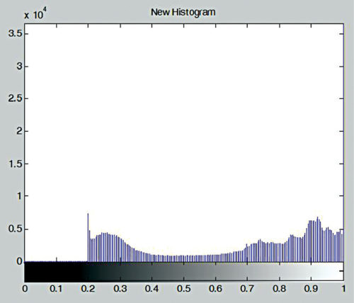 Histogram of modified image shown in Fig. 12