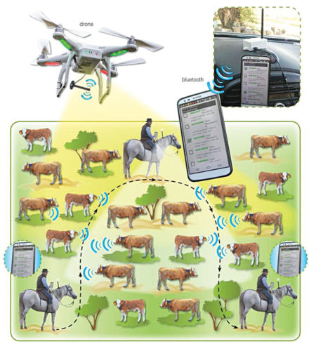 A geofencing-based cattle finder application