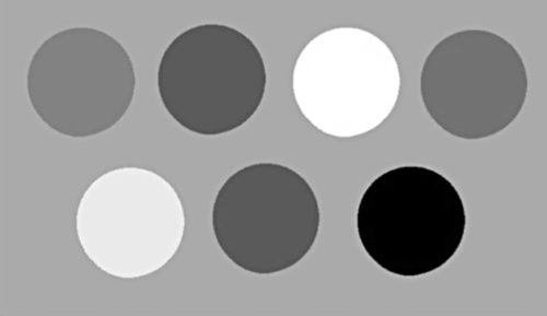 Grayscale version of the image in Fig. 14