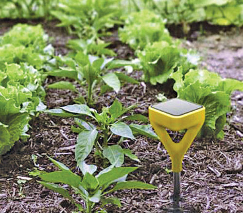Smart garden system consisting of Wi-Fi-connected sensor and water valve