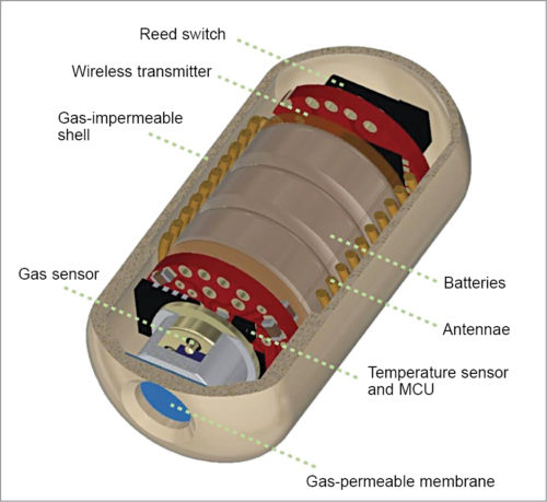 Electronic pill structure