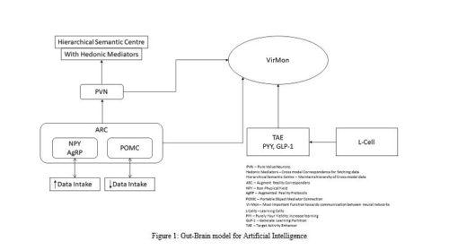 Gut-Brain model for Artificial Intelligence