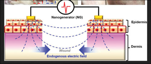 Electric field in a nanogenerator