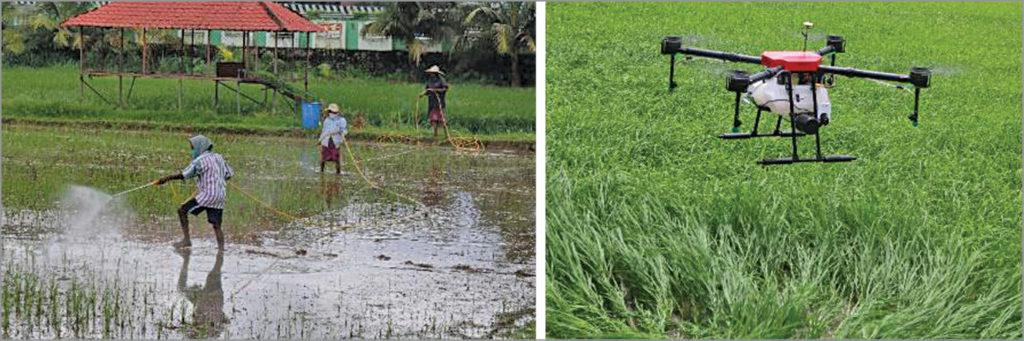 Traditional method (left) versus drone application