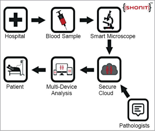 Workflow of Shonit