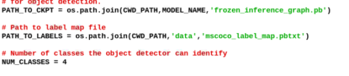 Path for Crowd Detection models