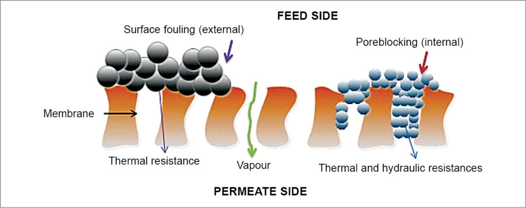 Mechanism of fouling in membrane