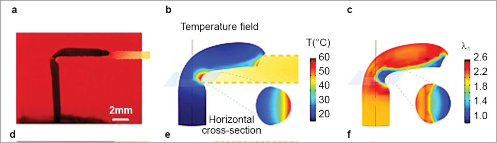 Temperature distribution and stretch field at steady aiming state