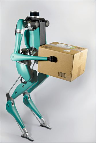Digit delivery robot