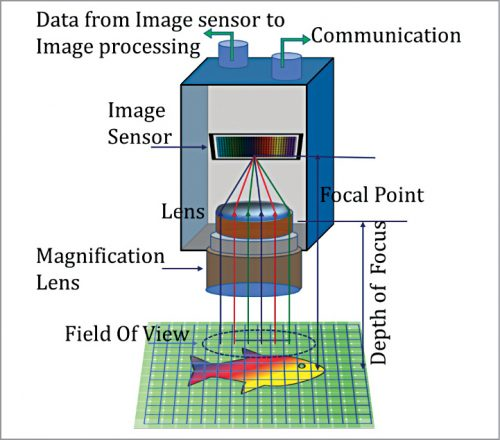 CCD image system