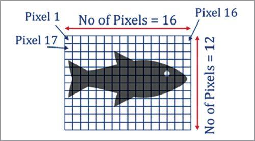 A picture is a matrix of pixels