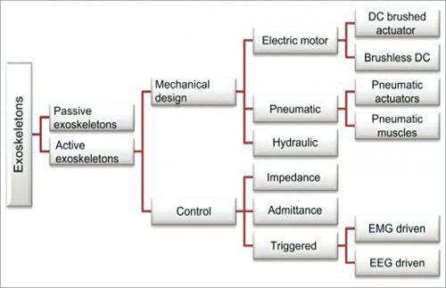 Classification of exoskeletons