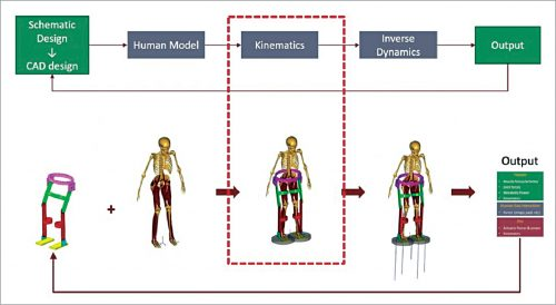 Design process of human-centred exoskeleton