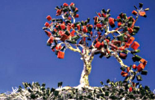 Deki bonsai
