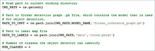 Crowd .pbtxt defined in the code