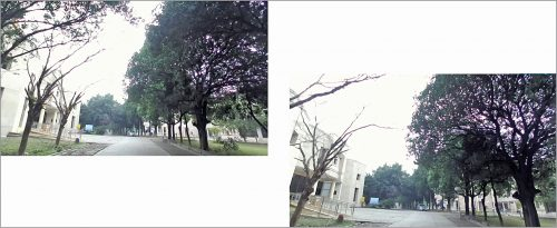 Two images of the same place taken from a stereo camera at different intervals of time