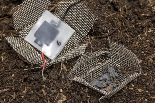Disintegrated Capacitor after two months of dumping
