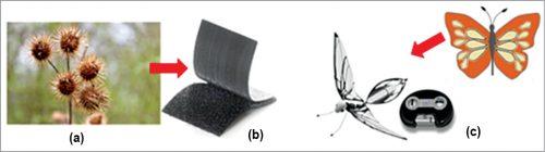 (a) Burdock seeds (Courtesy: www.almanac.com), (b) Velcro (Courtesy: amazon.com), (c) Metafly (Courtesy: amazon.com)