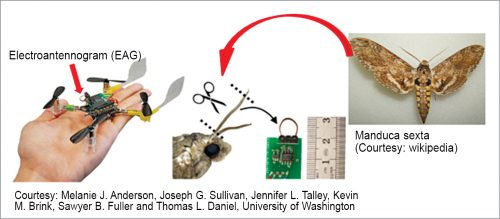 Elements of a smellicopter