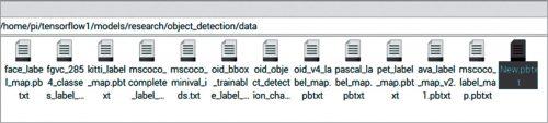 Creating file named New.pbtxt under data folder